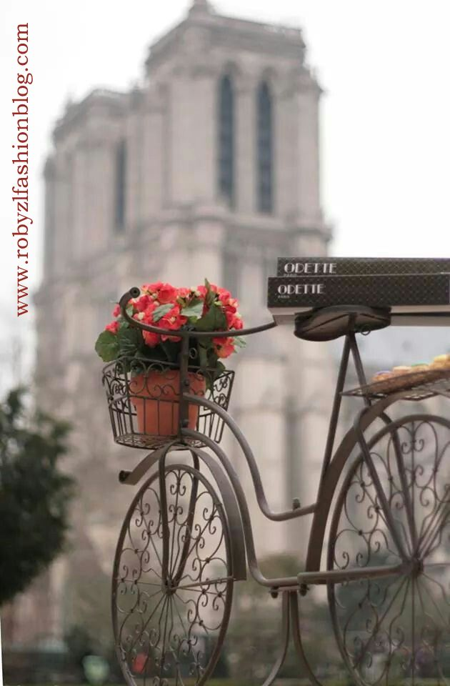paris_love_rose_flower_bici_robyzl_serendipity
