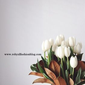 Tulipani_flower_monday_robyzl_serendipity