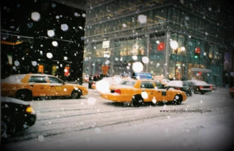 new_york_neve_snow_robyzl_serendipity