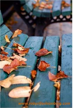 welcome_autumn_robyzl_serendipity_love_nature